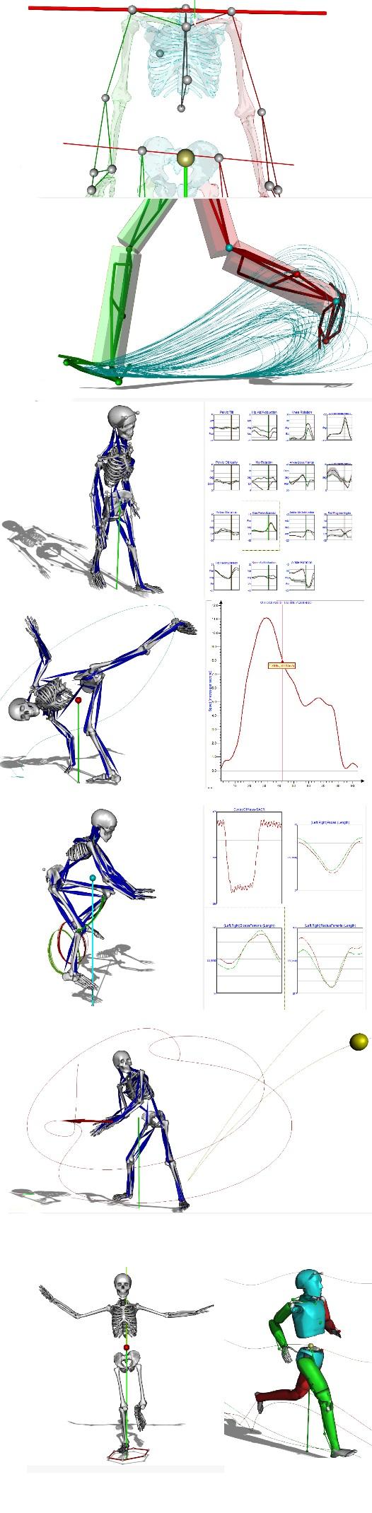 Análisis mediante el Sistema VICON: última tecnología en análisis biomecánico 3D, nuevo servicio al ICP
